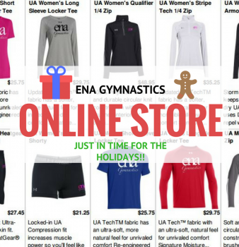 ENA Gymnastics Gear! (Great Gift Idea)
