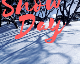 2/9 Snow closing – 9am-3pm