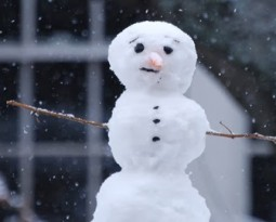 ENA will be closed due to snow today.